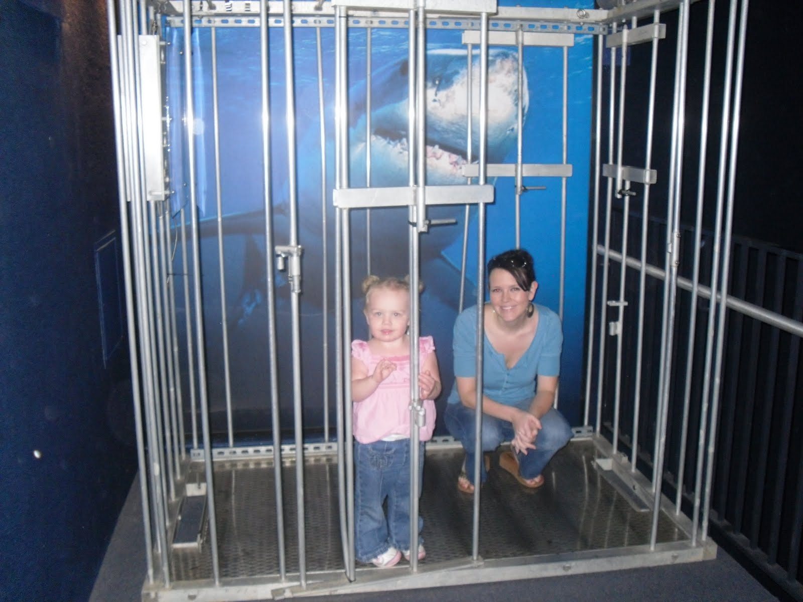 Printable coupons for tennessee aquarium